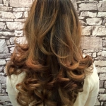Salon Image Client Blow Dry Long Hair